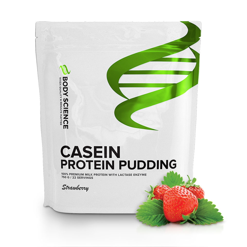 body science casein pudding