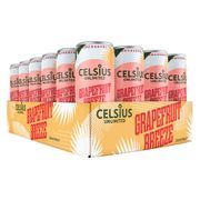 Celsius Unlimited Flak 24-pack
