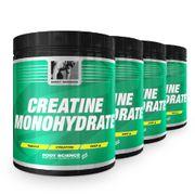 Creatine Monohydrate Storpack 4 st